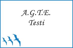 A.G.T.E. (Ankara Gelişim Tarama Envanteri)
