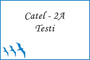 Cattell 2A Zeka Testi