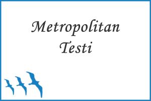 Metropolitan Okul Olgunlıuğu Testi
