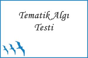 Tematik Algı Testi (T.A.T.)