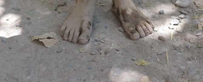 çıplak ayaklar